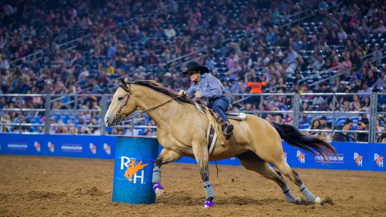 Houston Livestock Show and Rodeo Will Be Held in May 2021