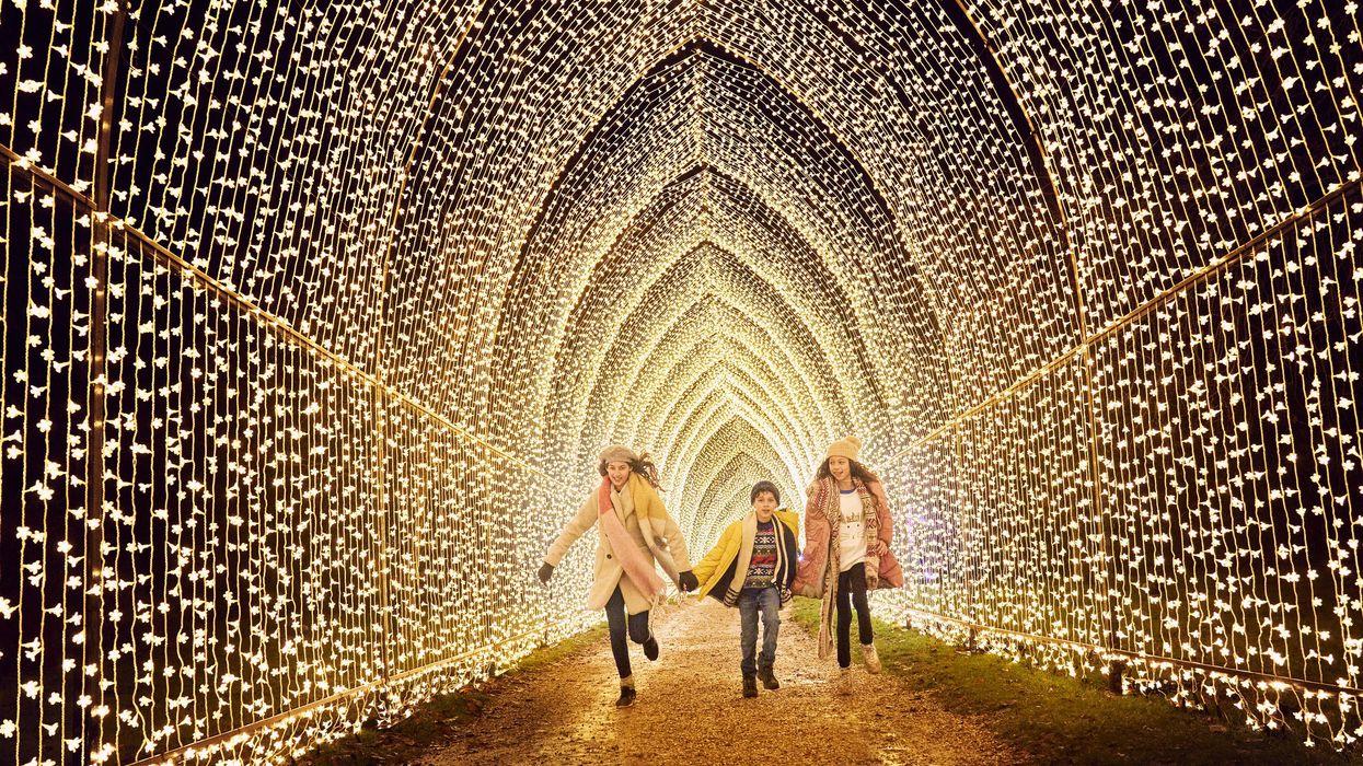 Famous Light Installation to Take Over Houston Botanic Garden for the Holidays, Tix Already on Sale