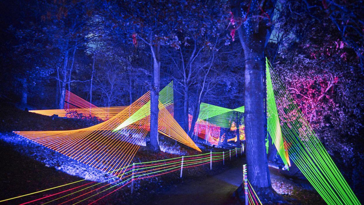 Houston Botanic Garden Celebrates One Year with Two Must-See Multimedia Exhibits