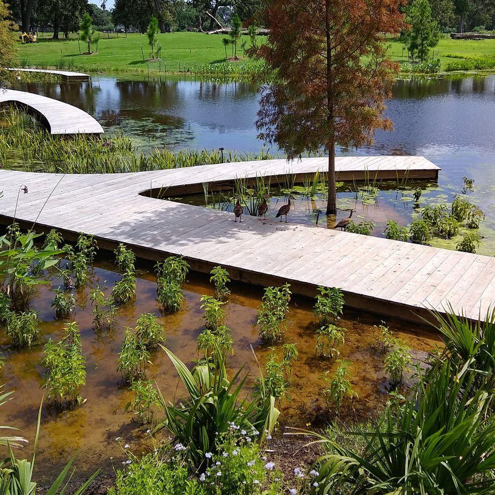 Get Outside! Houston Botanic Garden Opens Tomorrow